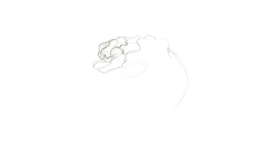 arachnid-creature-theDesignSketchboo[14]