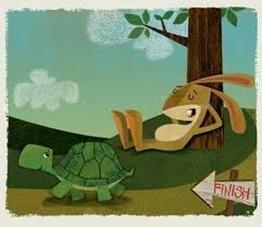 rabbit-turtle-race10