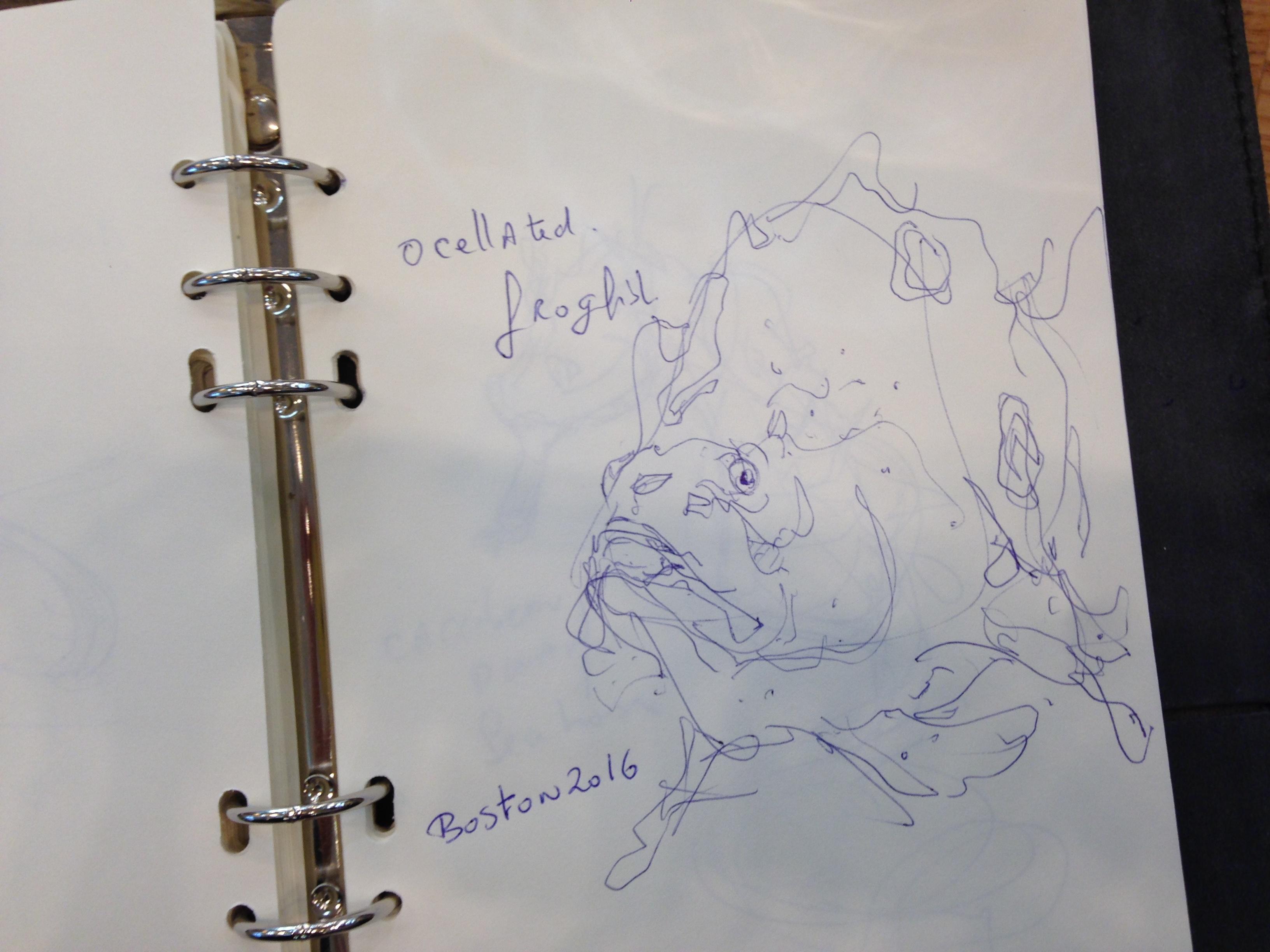the design sketchbook sketch boston acquarium fish drawing ball point pen blue bic a