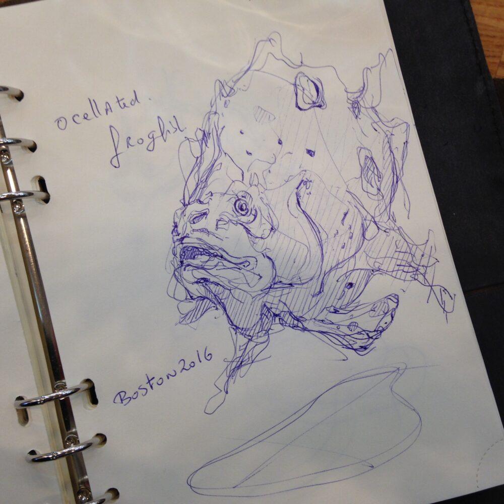 the design sketchbook sketch boston acquarium fish drawing ball point pen blue bic e