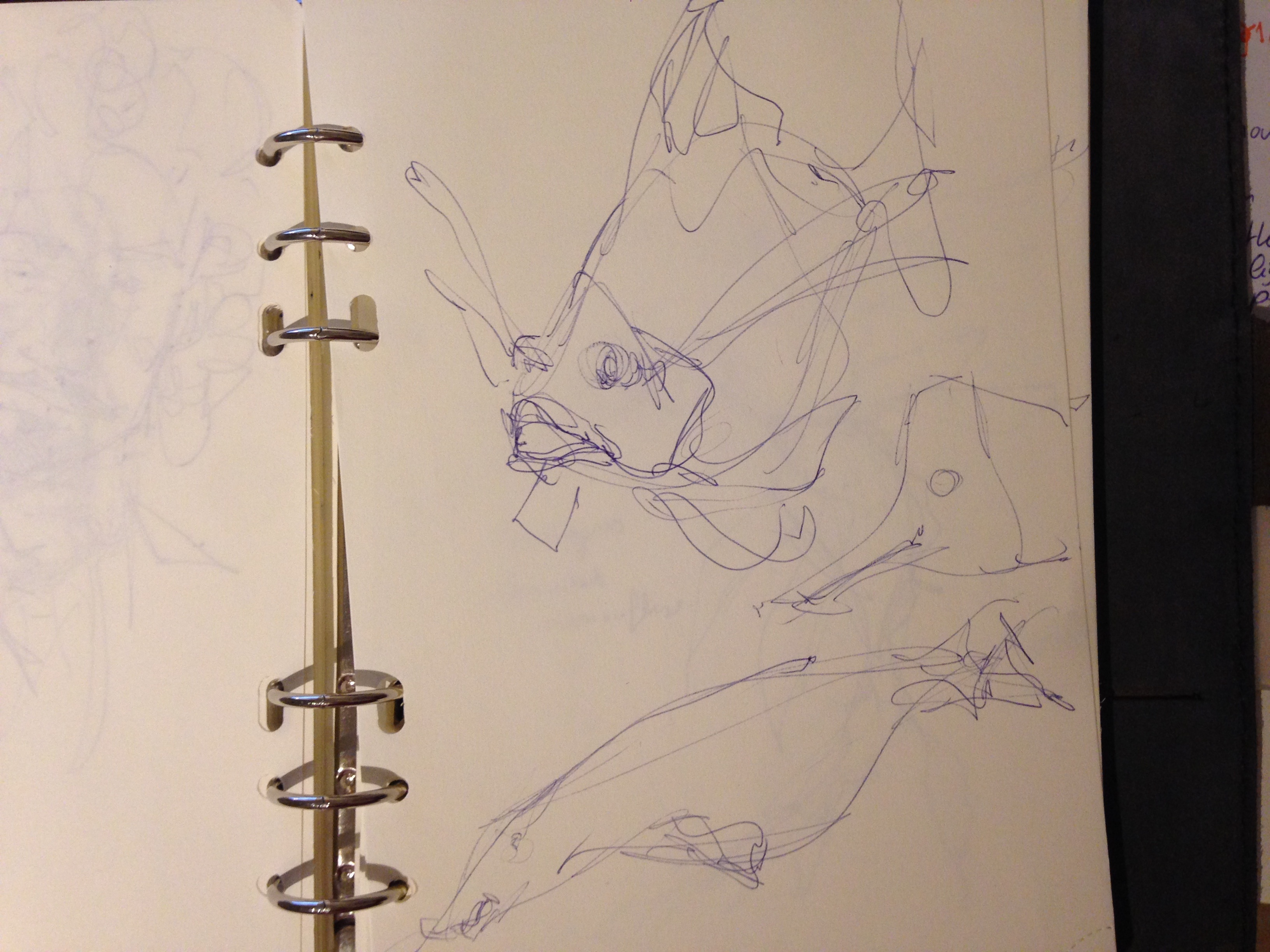 the design sketchbook sketch boston acquarium fish drawing ball point pen blue bic gh