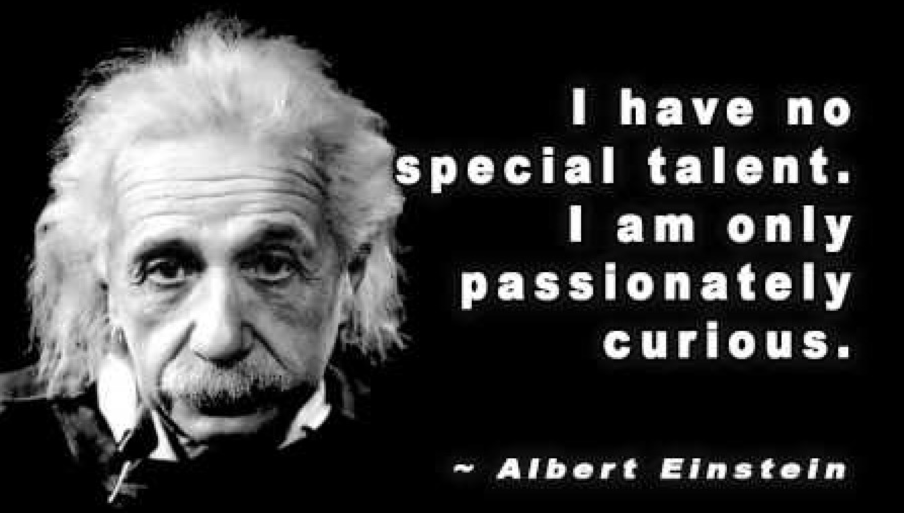 i have no talent i am passionnately curious albert einstein.png